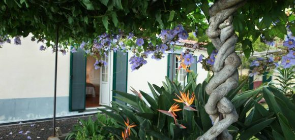 Detox and Health retreats with herbal medicine in Porreres, Majorca.