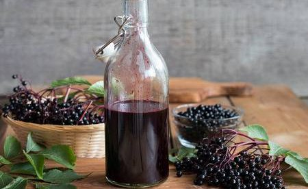 Elderberry – an effective anti-viral and great winter tonic