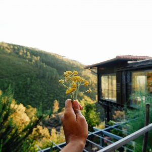 Vale de Moses, a natural paradise in the Portugese mountain 2