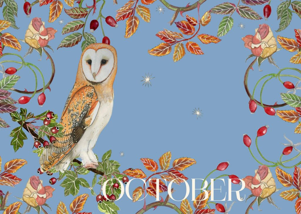 October: Rosehip and Hawthorn. Wild Roots Calendar 2021. Pre Order Available Now 3