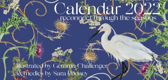 Wild Roots 2022, Seasonal Rhythms Calendar, Nature- herbs- yoga and intentions. Pre order now 🌺🌻🌼
